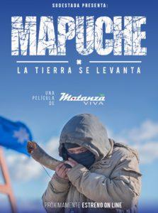 mapuche la tierra se levanta